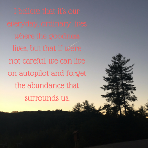 i-believe-that-its-our-everyday-ordinary-lives-where-the-goodness-lives-but-that-if-were-not-careful-we-can-live-on-autopilot-and-forget-the-abundance-that-surrounds-us-1